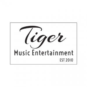 Tiger Music Entertainment Branding by Zapp Multimedia Gloucestershire UK