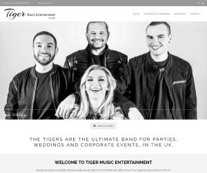 Tiger Music Entertainment website by Zapp Multimedia Gloucestershire UK